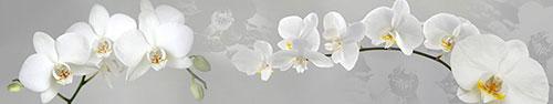Цветы - 15465