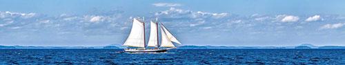 Скинали - Парусный корабль на воде