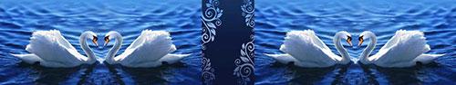 Скинали - Красивые лебеди в озере