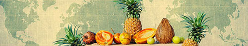 Скинали - Тропические фрукты на фоне карты мира