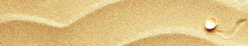 Скинали - Морская раковина на песке