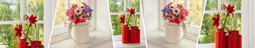 Скинали - Цветы в вазочках на окне в ясный день