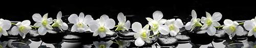 Скинали - Тигровые орхидеи на камнях дзен с каплями воды на черном фоне