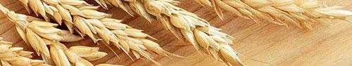 Скинали - Вершки пшеницы
