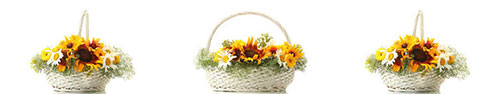 Скинали - Корзинки с полевыми цветами на белом фоне