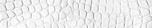 Скинали - Кожа крокодила белого цвета