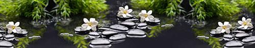 Скинали - Белая гардения на спа камнях в воде