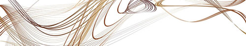 Скинали - Коричневые линии в красивом движении на белом фоне