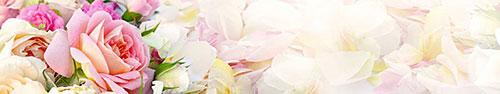 Цветы - 18883