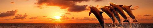 Скинали - Дельфины на закате, изображение с имитацией рисования пастелью