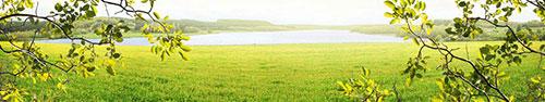 Скинали - Поле одуванчиков у озера в Бургундии, Франция