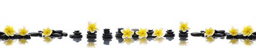 Скинали - Яркие цветы франжипани на камнях дзен