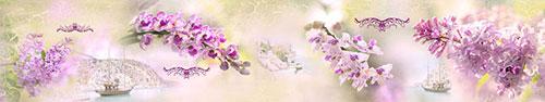 Скинали - Нежные цветы с фотографиями пляжа