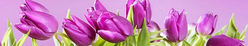 Скинали - Фиолетовые ландыши