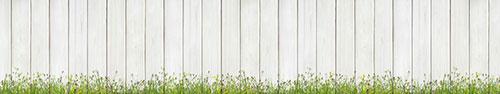 Скинали - Полевые цветы на фоне белой деревянной стены