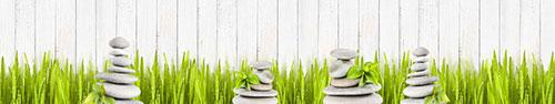 Скинали - Камушки на фоне травы с росой