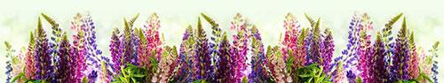 Скинали - Разноцветные люпины