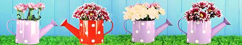 Скинали - Хризантемы в ярких лейках на траве