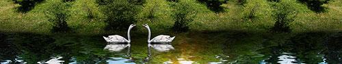 Скинали - Лебеди в озере