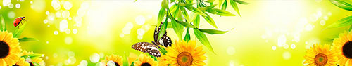 Скинали - Яркий солнечный фон с бабочкой и божьей коровкой в листьях