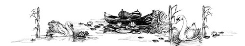 Скинали - Лебеди на озере, рисунок на белом фоне