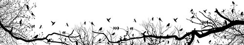 Скинали - Силуэты птиц на деревьях и кустах