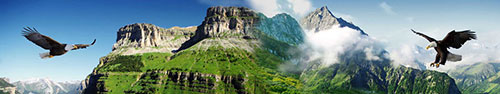 Скинали - Орлы над горными вершинами