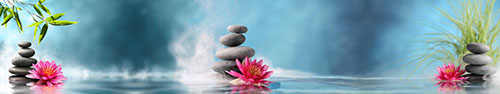 Скинали - Розовые водяные лилии и спа камни на воде