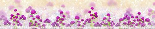 Скинали - Яркие цветы клевера на светлом фоне