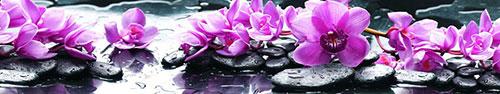 Скинали - Маджентовая орхидея на камнях спа с каплями воды