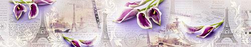Скинали - Фон-Париж с необыкновенными каллами