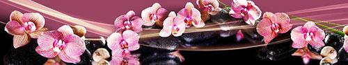 Скинали - Черно-малиновый фон с орхидеями