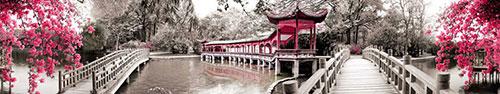 Скинали - Парк в Китае с цветущими деревьями