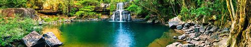 Скинали - Водопад в тропическом лесу