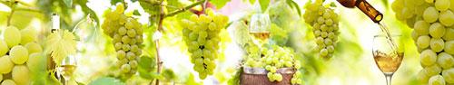 Скинали - Зеленый виноград в солнечный день