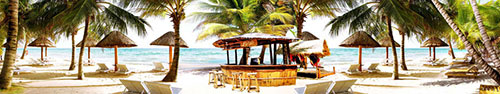 Скинали - Солнечный день на тропическом пляже