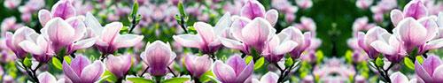 Скинали - Весенние цветы