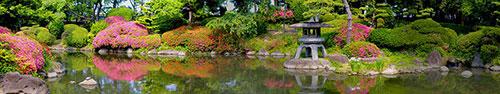 Скинали - Красивый восточный сад
