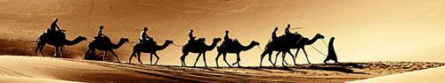 Скинали - Каравае верблюдов идет по пустыне