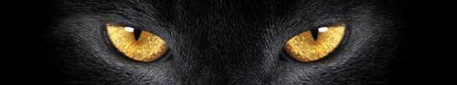 Скинали - Глаза пантеры