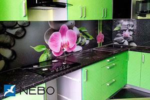 Орхидеи для скинали в интерьере кухни - 21844