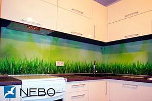 Трава для скинали в интерьере кухни - 21809