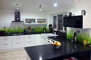 Растения для скинали в интерьере кухни - 22352