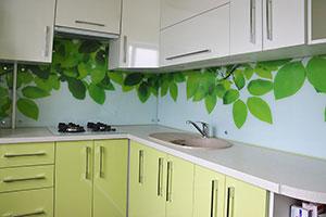 Растения для скинали в интерьере кухни - 22251